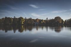 Autumn Lake (Jan Tervooren) Tags: fujifilm x100f autumn herbst borken nordrheinwestfalen deutschland deu spaziergang lake pröbstingsee pröbsting see