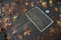 Willamette Stone State Heritage Site (Portland, Oregon) - November 2nd, 2018 (cseeman) Tags: willamettestonestateheritagesite oregonstateparks parks stateparks trees portland2018 pacificnorthwest oregonparks portland oregon overcast wet autumn willamettestone surveyors oregonhistory stateheritagesite trails paths willamettestonestatepark