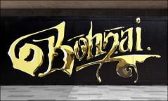 Bonzai (Alex Ellison) Tags: bonzai shoreditch eastlondon urban graffiti graff boobs halloffame