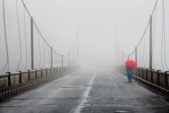 Fog, Meghalaya (dr.subhadeep mondal's photography) Tags: travel travelphotography meghalaya india indianstreet northeast street subhadeepmondalphotography fog cloud canon color life bridges incredibleindia monsoon outdoor