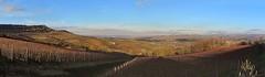 Barolo Langhe (Danilo_83) Tags: barolo langhe piemonte italia italy panorama landscape colline