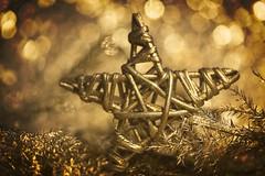Starry night (Hans Lambregts) Tags: macromondays holidaybokeh bokeh