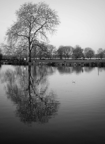 Quiet Flows the Ouse