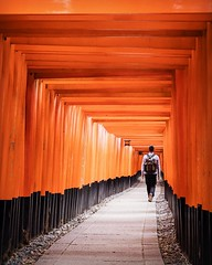 Fushimi Inari-Taisha, head shrine of Inari. (MANFRED SODIA photography) Tags: orange temple japan shrine inari