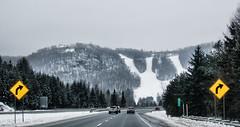 Mont Gabriel (Richard Pilon) Tags: montgabriel winter laurentians snow skihill canon quebec canada