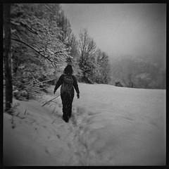 (julien_o_O) Tags: holga bw winter snow square savoie
