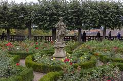Rose Garden at Neue Residenz 2 (rschnaible) Tags: bamberg germany europe outdoor sightseeing garden botanical rose statue neue residence