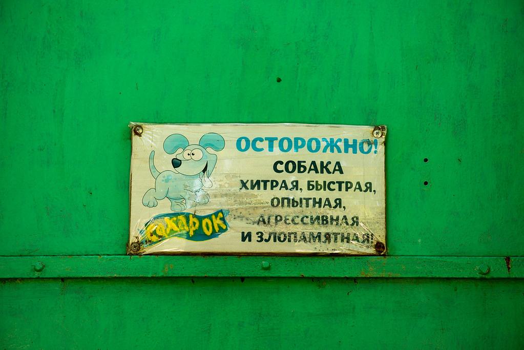 фото: Сахарок