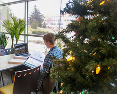 Student studying near Christmas Tree (UWW University Housing) Tags: students studying christmas trees holidays uc uwwhitewater uww uwwhousing