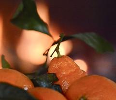Mandarins by the fire (Cathy de Moll) Tags: macromondays holidaybokeh bokeh fireplace orange mandarin food fruit homey comforting