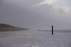 DSC02774 (ZANDVOORTfoto.nl) Tags: zandvoort edwin keur fotografie aan zee strand nederland netherlands kust coast shore beach beachlife strom stormy weather stormyweather wind hardwind sandstorm