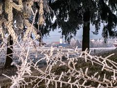 Raureif statt Schnee (Tobias Keller) Tags: bank bavaria bayern deutschland germany heimat huisheim landkreisdonauries landschaft natur raureif schwaben swabia winter bench home landscape nature geo:location=huisheim camera:make=panasonic geo:lon=1070257548 exif:focallength=42mm geo:lat=4881641278 geo:country=deutschland geo:city=huisheim geo:state=bayern camera:model=dmcg5 exif:lens=lumixgvario1442f3556 exif:aperture=ƒ80 exif:isospeed=160 exif:model=dmcg5 exif:make=panasonic lumixgvario1442f3556 panasonicdmcg5