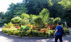 Vacances_0836 (Joanbrebo) Tags: mainau konstanz badenwürttemberg de deutschland canoneos80d eosd efs1855mmf3556isstm autofocus park parque parc garden jardín jardí gente gent people