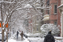 My street (Tim Brown's Pictures) Tags: washingtondc city urban 14thstreetcorridor ustreet winter snow snowing snowstorm snowflakes january132019 people pedestrians washington dc unitedstates