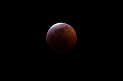 Lunar Eclipse 2019 (Luke Robinson) Tags: 2019 canyonwrenranch comfort eclipse family hillcountry jerry lee lunareclipse moon ranch robinsons texas totaleclipse usa wolfmoon
