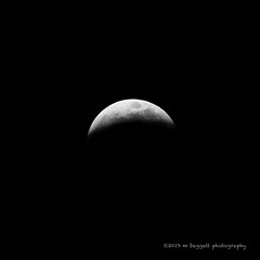 Super Moon Eclipse (99baggett) Tags: astrophotography blood eclipse jmb1950 mbaggettphotography sky supermoon wolf astrometrydotnet:id=nova3161589 astrometrydotnet:status=solved