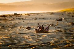 DSC03973-pop-skin (Angelica Perduta) Tags: ndfilter beach sunrise haze