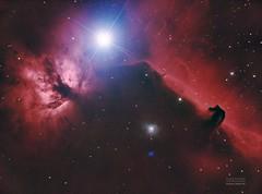 IC434 Nébuleuse de la tête de cheval (Duartdav6) Tags: nébuleuse nebulae espace space ciel sky telescope etoile etoiles stars astrophotographie astro astronomie astronomy astrophotography tete cheval hygrogen hydrogène ic434