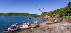 Ambiente marino. (Eugercios) Tags: angelmo puerto montt chile mar sea fisherman pescadores port sudamerica america southamerica iberoamerica latinamerica latinoamerica hispanoamerica region x los lagos boat barca landscape paisagem paisaje ship barcos marino