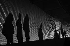 Shadow Ripples (ep_jhu) Tags: sombras pattern washington dc fujifilm light shadows x100f museum circles fuji bw dark acros lines dcist hirshhorn districtofcolumbia unitedstatesofamerica us