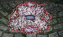 Kirkintilloch War Memorial. (Paris-Roubaix) Tags: 1st lenzie boys brigade bb kirkintilloch remembrance day parade 2018 east dunbartonshire townhead cowgate peel park war memorial pipe band handpainted poppies
