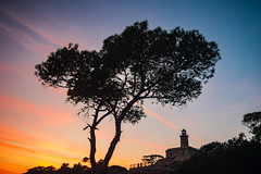 The Tree And The Lighthouse (panos_adgr) Tags: nikon d7200 landscape photography tree lighthouse nature sunset sky light clouds silhouette contre jour salamina attica greece
