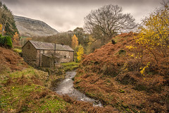 Autumn in Eglwseg Valley (ashton.clive) Tags: autumn leaves trees mountain bracken old mill stream colours