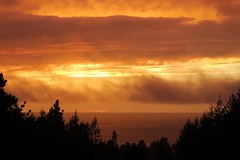At the end of the storm there's a golden sky (jinxmcc) Tags: sunset edgewood saundersreef mendocinocoast northerncalifornia