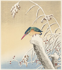Kingfisher in the snow (1925 - 1936) by Ohara Koson (1877-1945). Original from The Rijksmuseum. Digitally enhanced by rawpixel. (Free Public Domain Illustrations by rawpixel) Tags: pdproject21batch2x otherkeywords tagcc0 animal antique art asian bird drawing fish illustration japan japanese kingfisher koson marinelife museum name ohara oharakoson old paint rijksmuseum vintage