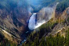 Yellowstone Falls (San Francisco Gal) Tags: yellowstonefalls grandcanyonoftheyellowstoneriver canyon waterfall water river yellowstonenationalpark light autumn 2018 ngc npc