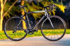 Colnago CX-1 EVO Dura-Ace with Italian Goodness! (Dennis Schrader Photography) Tags: bike colnagocx1evo 70200mm28tamron bicycle dennisschraderphotography 2019 d610 dura ace selle smp mavic carbon fiber zipp road