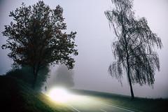 The car (mripp) Tags: art vintage retro night nacht fog fogy car driving van life nikon z7 nikkor 50mm f12