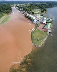After the Storm (milfodd) Tags: july 2018 imagecompositeeditor aerialphotography quadcopter dji drone phantom4pro dutchmenslanding catskillcreek hudsonriver muddywater stormrunoff insect