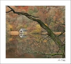 Rydal Boathouse Framed (Simon Caplan) Tags: landscape englishlandscape lakedistrict cumbria rydalwater woodland forest trees boathouse autumn autumncolours