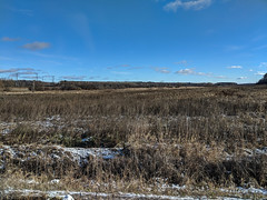 Mer Blue Conservation Area in Winter (lezumbalaberenjena) Tags: winter invierno hiver hiber snow nieve niege lezumbalaberenjena 2018 mer bleue conservation area bog pantano