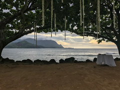 2018.08 Kauai 042.jpg (surf4life808) Tags: princeville hawaii unitedstates us