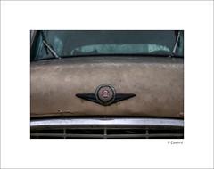 Checker Motors Corporation (* Gemini-6 *) Tags: ornaments grille window hdr glass emblem checker vehicle transportation automobile rust grunge chrome closeup