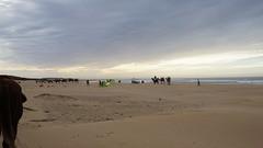 2016-01-08_16-08-15_ILCE-6000_DSC02749 (Miguel Discart (Photos Vrac)) Tags: 2016 46mm animal animalphotography animals animalsupclose animaux beach citytrip epz1650mmf3556oss essaouira focallength46mm focallengthin35mmformat46mm holiday ilce6000 iso100 landscape maroc meteo morocco nature naturephotography panorama plage sony sonyilce6000 sonyilce6000epz1650mmf3556oss travel vacance vacances voyage weather