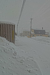 View of a Blizzard/White-Out, Looking South (sjrankin) Tags: 18january2019 edited kitahiroshima hokkaido japan hdr winter snow wind road houses neighborhood blizzard whiteout blowingsnow lines wires