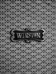 winston (shortscale) Tags: guitar proberaum mellah winston lautsprecher speaker schwarzweiss blackandwhite noiretblanc monochrome