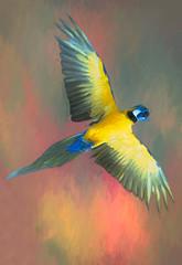 Macaw in Flight (Sh4un65_Artistry) Tags: painteffect painterly birds animals topaz textured digitalpainting topazimpression artwork paintedphoto taxidermy digitalart stilllife macaw parrot naturalhistorymuseumlondon