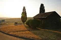 _MG_3382a - 28.08.2019 (hippo1107) Tags: konz oberemmel konzertälchen sonnenuntergang sunset sommer august 2018 abendrot abendstunde radfahren wandern ausruhen entspannen aussicht weinberge wiesen felder grün landschaft landschaftsfotografie marienkapelle kapelle chapbel canoneos70d canon eos 70d bank bench wanderweg ruhe stille