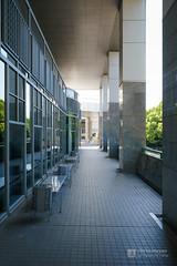 Pilotis of Hiroshima City Museum of Contemporary Art (広島市現代美術館) (christinayan01 (busy)) Tags: hiroshima japan architecture building museum perspective kurokawa kisho