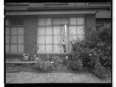 Hopetoun vi (@fotodudenz) Tags: fuji fujifilm ga645w ga645wi medium format point and shoot film rangefinder 28mm 45mm 2018 120 box hill melbourne victoria australia ilford hp5 plus hopetoun parade