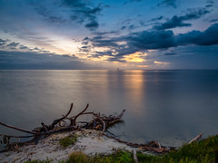 Early morning on the river shore 2 (Ed Rosack) Tags: grass sand landscape deadtree riverscape water ©edrosack lowlight longexposure tree river cloud buildingandarchitecture sky dawn reflection nature building branch cloudy titusville florida usa us edrosackcom