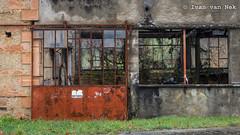 Roofless (Ivan van Nek) Tags: hautegaronne 31 france occitanie midipyrénées frankrijk frankreich nikon nikond7200 d7200 doorsandwindows ramenendeuren decaying abandoned blacksmith metaldoor metalwindows iron overgrown