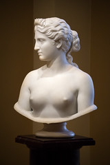 Only Rhyme (dayman1776) Tags: sony a6000 beautiful sculpture sculptor sculptures statue escultura skulptur art museum figurative marble greek roman myth mythology mythological flower flowers nude neoclassical female woman goddess god pantheon breasts dc washington smithsonian american