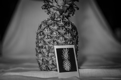 Deconstructed Still Life (Phil Roeder) Tags: desmoines iowa blackandwhite monochrome stilllife deconstructed fruit instax leicasofort canon6d canonef50mmf18