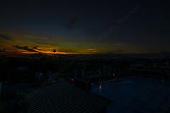 16 (morgan@morgangenser.com) Tags: sunset pretty beautiful red orange colorful evening dusk clouds blue palmtree santamonicacollege smc silhouette sun yellow cool