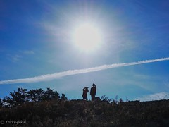 Tourists (Yorkey&Rin) Tags: 11月 2018 autumn bluesky couple em5markii fukui japan lumixg20f17 november olympus pb130027 rin silhouette sun tojinbo tourists カップル シルエット 坂井市 秋 青空 東尋坊 福井県
